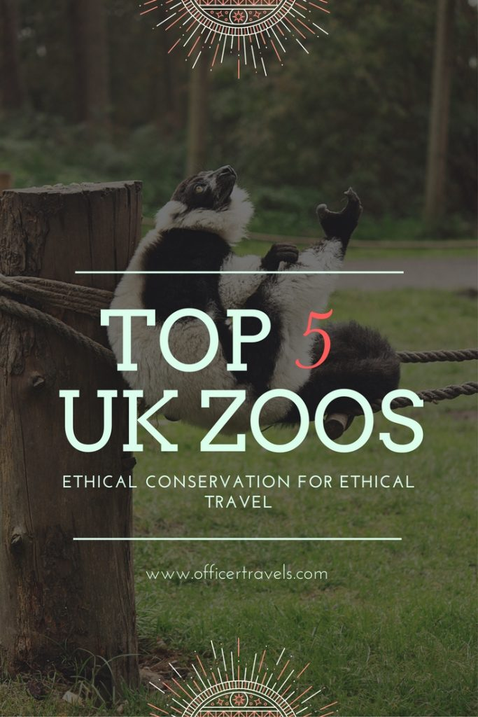 Our favourite Ethical Zoos in England