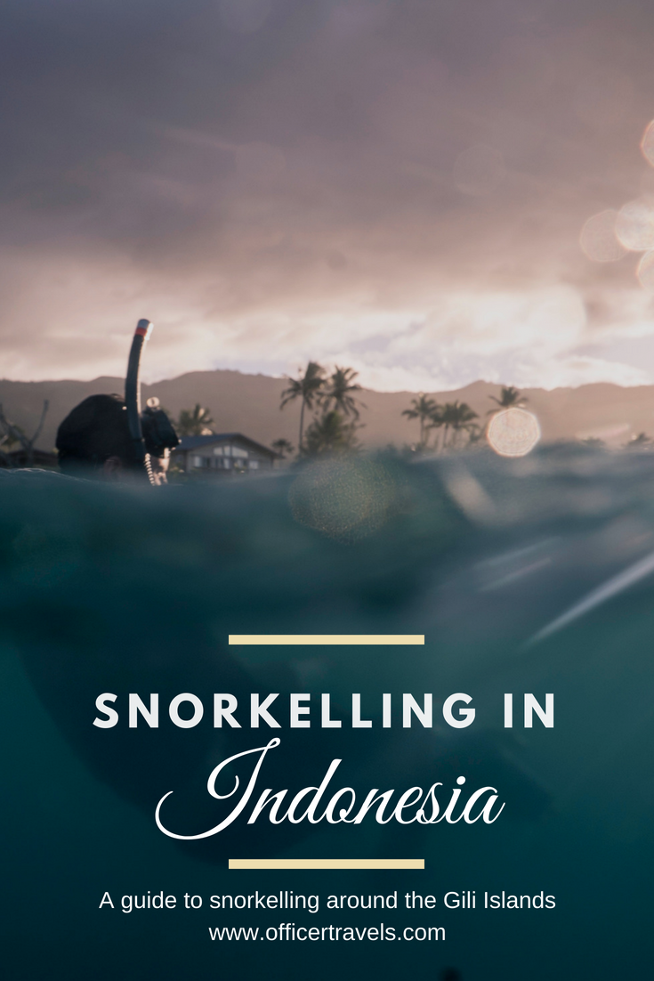Snorkelling at the Gili Islands - and 5 successful tips to conquering fears abroad - #seflfhelp #snorkelling #emotionaljourney #inspiringstory #travelguide #indonesiaguide #traveljourney #adventures #wanderlusting