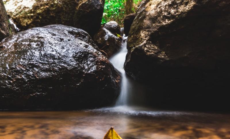 cedar creek rock-pool on a walking track in mount tamborine national park