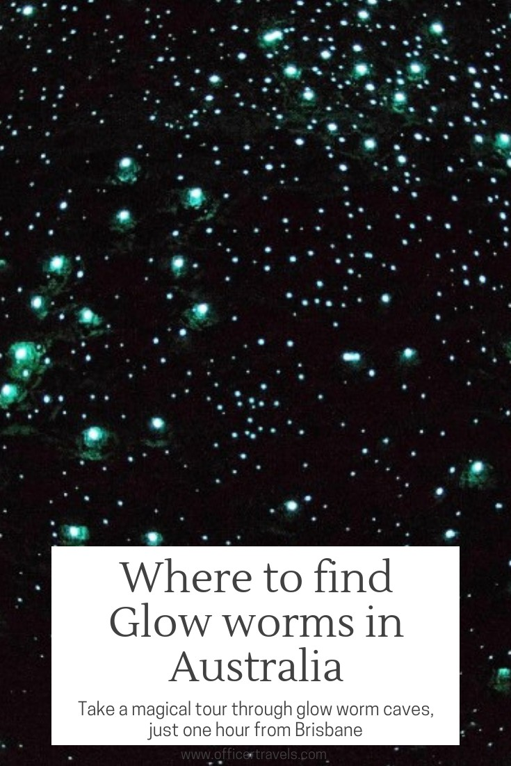 Seeing glow worms in a once in a lifetime experience, especially since they can only be found in Australia and New Zealand. Find out where you can find them in Australia, as well as why this tour is one of the most eco-friendly in the country   #glowowrms #nationalparks #cavetours