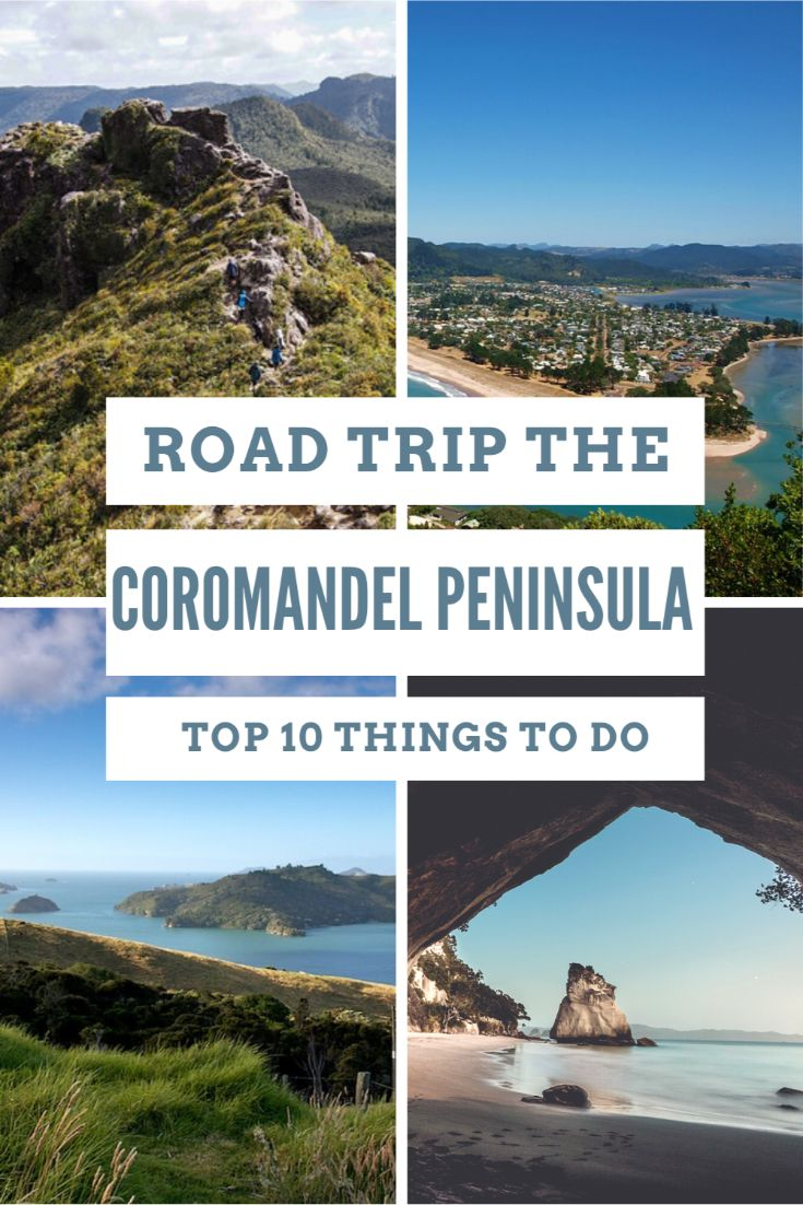 pinterest image for coromandel road trip