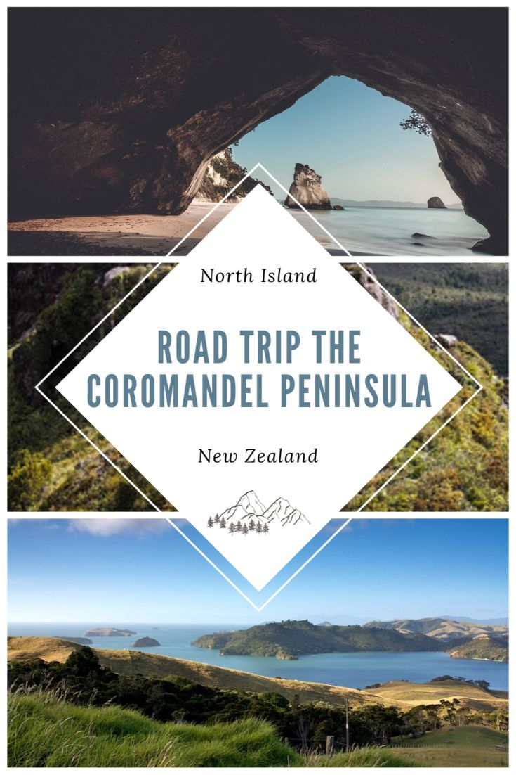 pinterest image for coromandel road trip
