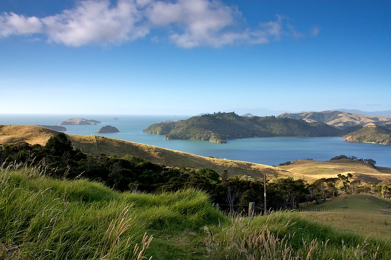 Coromandel road trip views