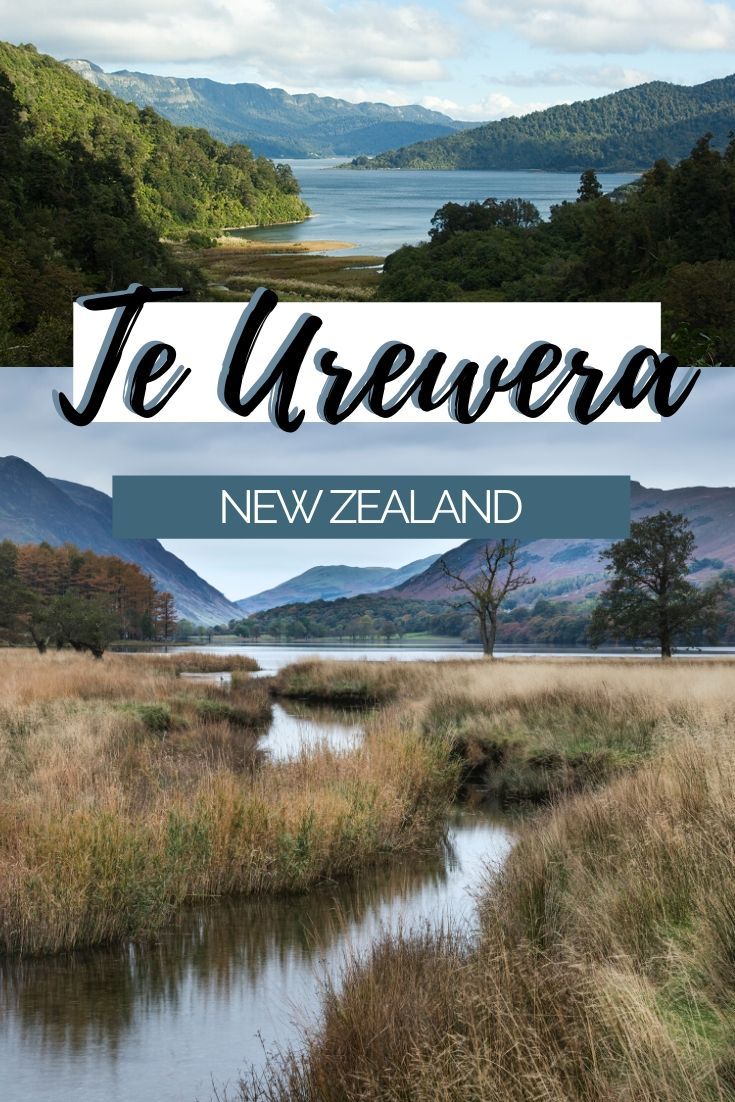 Te Urewera is a unique place in New Zealand as it's the first part of nature to be given its own rights. Once a national park, Te Urewera is now recognised as its own entity and is protected by its own personal rights. Here are 9 short walks within Te Urewera to help you explore it further! | Unique Places in New Zealand, Travel Itinerary New Zealand #NewZealand #NZmustdo #SeeNZ