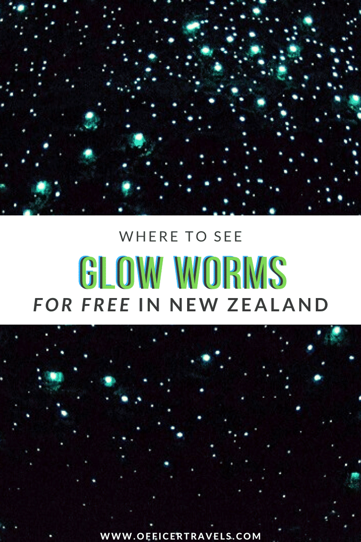 pinterest image for places to see glow worms in New Zealand