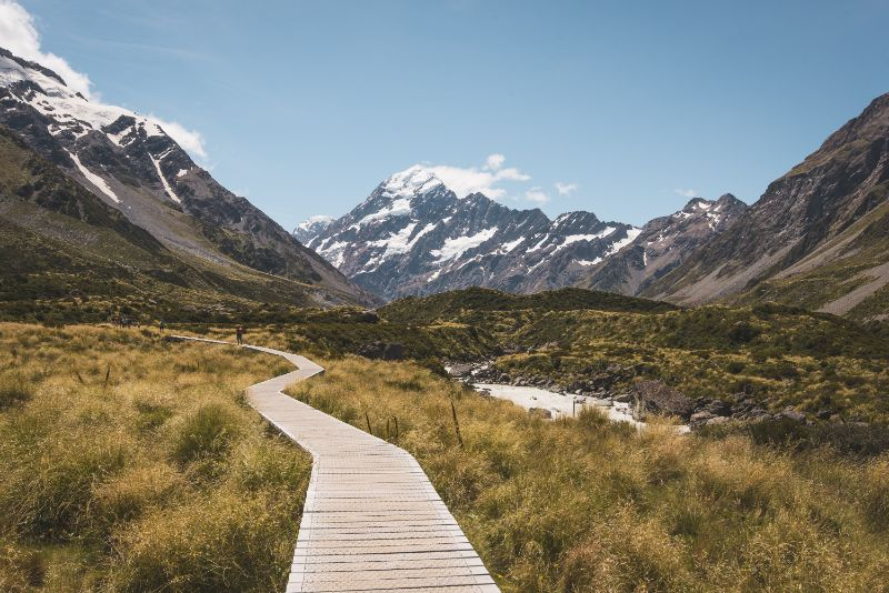 Landscape image of the boardwalk on the Hooker Valley Track. Clear blue skies over Mount Cook and brown alpine grass field