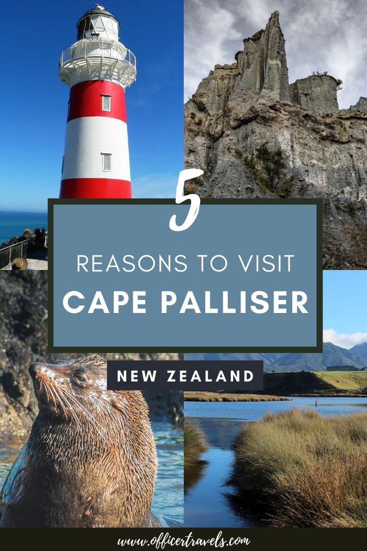 Explore Cape Palliser, a hidden corner of New Zealand's North Island. Not many travellers make it to this corner of the North Island and they're missing out! | New Zealand Hidden Gems, Places to see in New Zealand, New Zealand Itinerary, New Zealand Travel Guide, New Zealand Guides, Cape Palliser New Zealand | #Travel #NewZealand #CapePalliser #Wellington