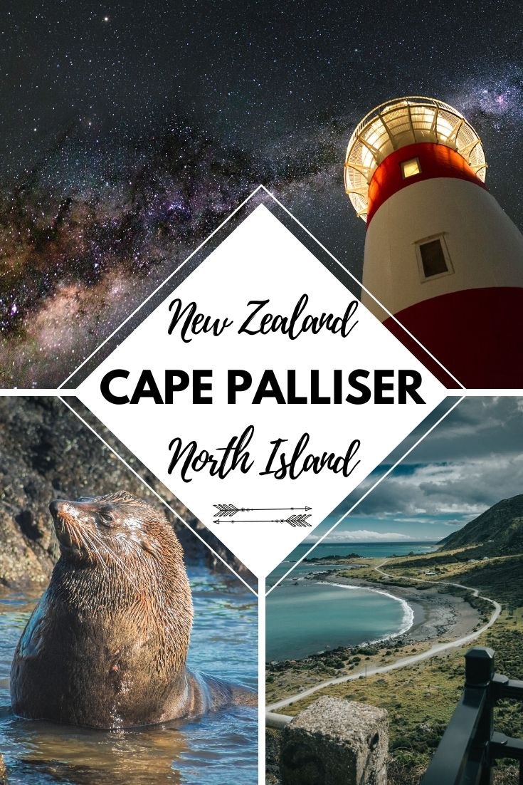 The Wellington to Cape Palliser Road Trip is one not to be missed. See a different side to New Zealand's North Island with the rugged seascapes, unique rock formations and amazing wildlife | Things to do on New Zealand's North Island, Travel Around New Zealand, New Zealand Itinerary, Road Trip Itinerary | #Travel #NewZealand #CapePalliser