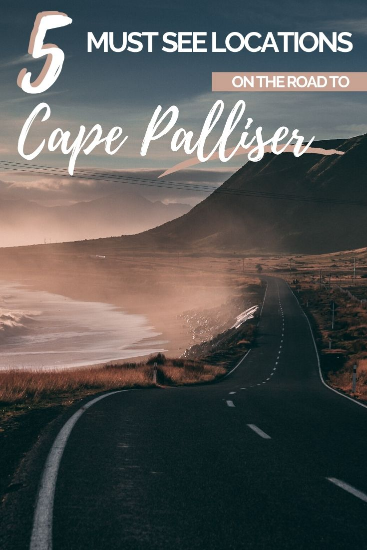 Road trip to Cape Palliser and witness its rugged beauty. A real hidden gem hidden close to Wellington on New Zealand's North Island | Road Trips to do in New Zealand, New Zealand Road Trip Ideas, New Zealand North Island Itinerary, Places to go Near Wellington, Day Trips From Wellington | #NewZealand #Wellington #TravelNZ #RoadTrip